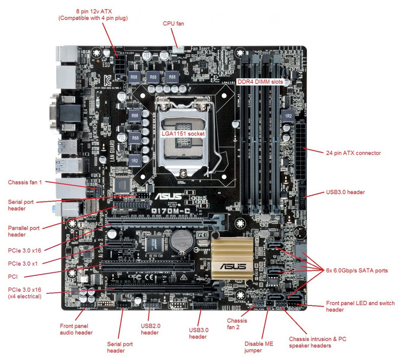 Boamot-482 - Stone    Asus Q170m-c - Motherboard Specification  Layout And Manual